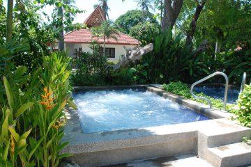 Swimming Pool im Garten, kein aufblasbarer, sondern fest eingebaut